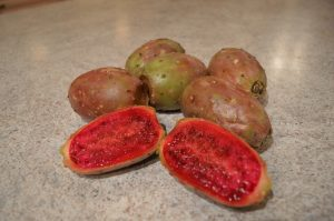 prickly pears - aka opuntia - cookingwithkimberly.com